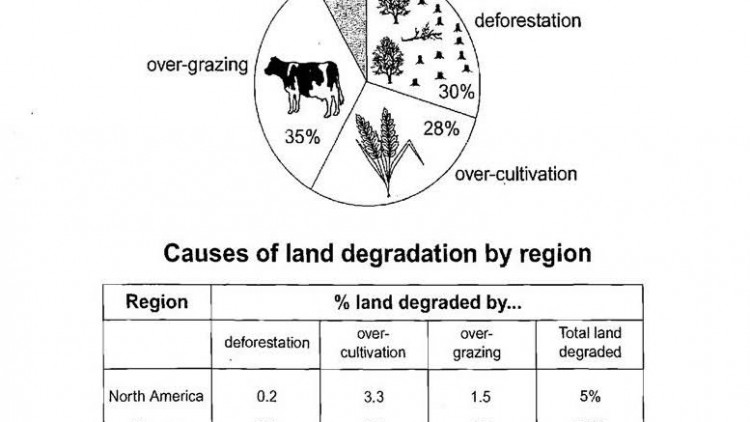 IELTS Writing Task one : Causes of worldwide land degradation