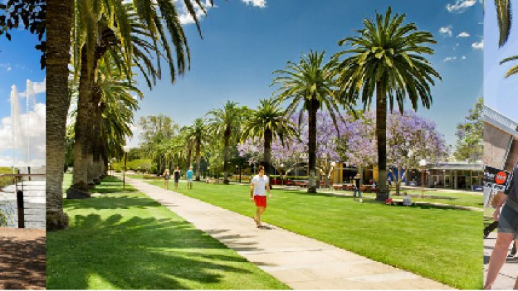 ทุนทำวิจัยเต็มจำนวนจาก University of Queensland พร้อมค่าครองชีพรายปี